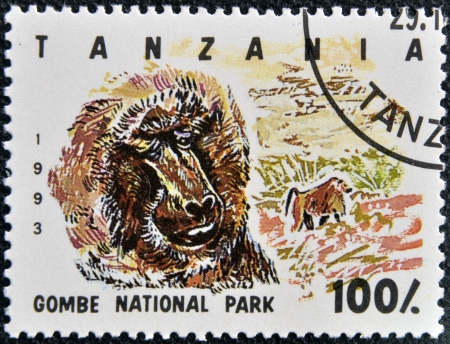 canceled: TANZANIA - CIRCA 1993: Stamp printed in Tanzania dedicated to Gombe National Park, shows baboon, circa 1993