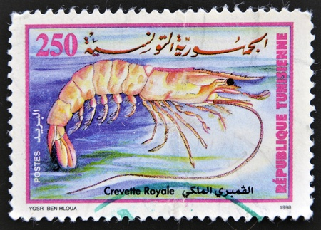 TUNISIA - CIRCA 1998: stamp printed in Tunisia, shows a royal prawn, circa 1998.  Stock Photo - 16306897