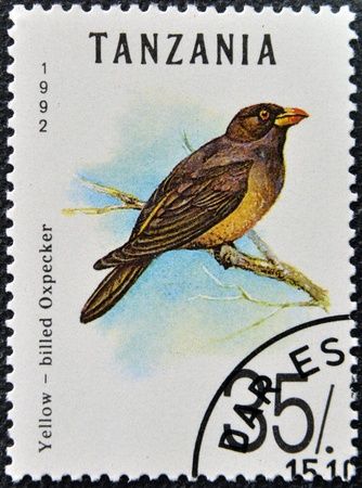 TANZANIA - CIRCA 1992: A stamp printed in Tanzania shows  yellow - billed oxpecker, circa 1992  Stock Photo - 16424378