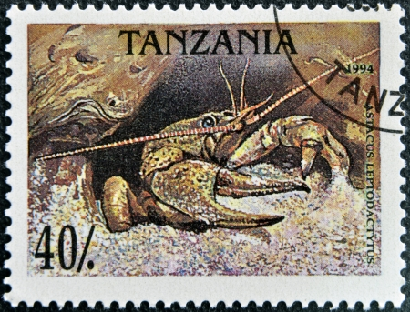TANZANIA - CIRCA 1994: A stamp printed in Tanzania shows a prawn, circa 1994