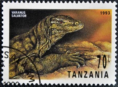 salvator: TANZANIA - CIRCA 1993: A stamp printed in Tanzania shows Varanus Salvator, circa 1993 Editorial