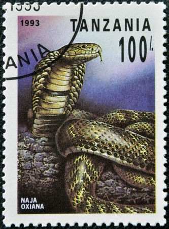 TANZANIA - CIRCA 1993: A stamp printed in Tanzania shows naja oxiana, circa 1993