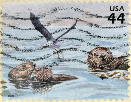 seabird: UNITED STATES OF AMERICA - CIRCA 2009: A stamp printed in USA shows two otters eating a hedgehog and a seabird, circa 2009