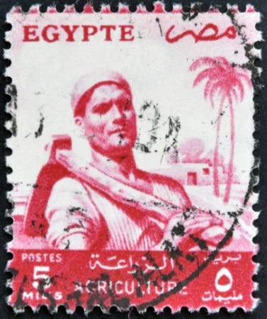 EGYPT - CIRCA 1958: A stamp printed in Egypt shows image of an agricultural worker, circa 1958  Stock Photo - 16958826