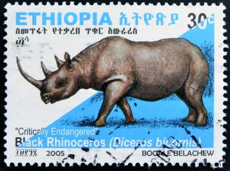 ETHIOPIA - CIRCA 2005: A stamp printed in Ethiopia shows Black Rhinoceros, diceros bicornis, circa 2005 photo