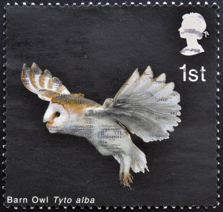 UNITED KINGDOM - CIRCA 2003: A stamp printed in Great Britain shows Barn Owl with extended Wings and Legs down, circa 2003 Stock Photo - 16959232