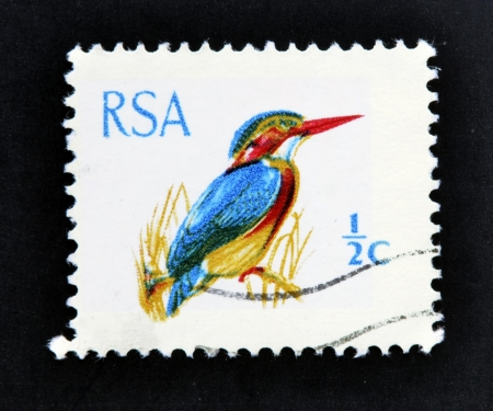 postmail: SOUTH AFRICA - CIRCA 1969: A stamp printed in South Africa (RSA) shows African Pygmy Kingfisher - Ispidina picta, circa 1969