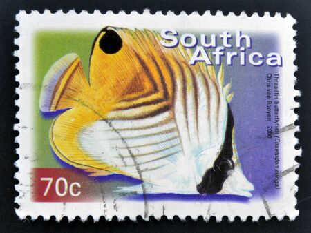 rsa: SOUTH AFRICA - CIRCA 2000: A stamp printed in RSA shows threadfin butterflyfish, Chaetodon auriga, circa 2000  Stock Photo
