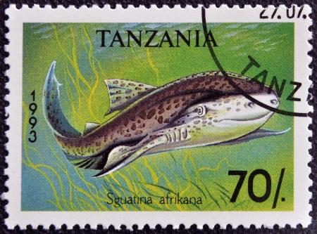 TANZANIA - CIRCA 1993: A stamp printed in Tanzania shows African angelshark, Squatina africana, circa 1993 Stock Photo - 16959493