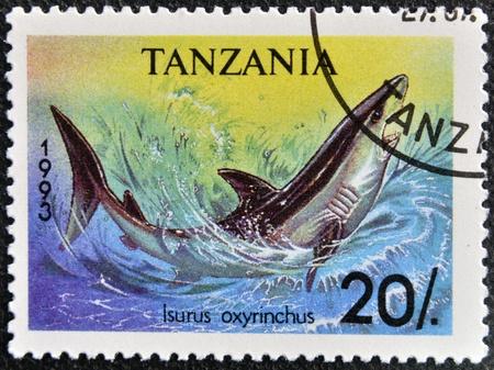 TANZANIA - CIRCA 1993: A stamp printed in Tanzania shows shortfin mako shark, Isurus oxyrinchus, circa 1993 Stock Photo - 16959489