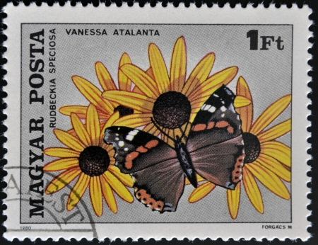 vanessa: HUNGARY - CIRCA 1980: A stamp printed in Hungary showing vanessa butterfly and rudbeckia flower, circa 1980