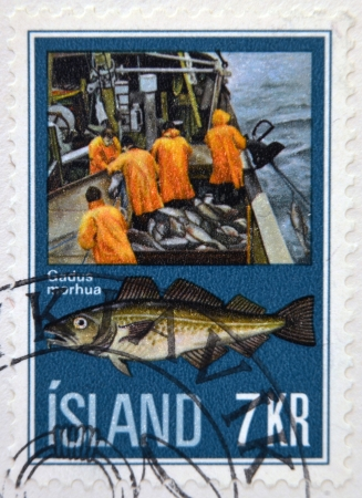 ICELAND - CIRCA 1970: A stamp printed in Iceland shows fishermen and gadus morhua, circa 1970 Stock Photo - 17140138