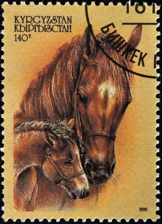 filly: KYRGYZSTAN - CIRCA 1995: A stamp printed in Kyrgyzstan shows horse with filly, circa 1995  Stock Photo