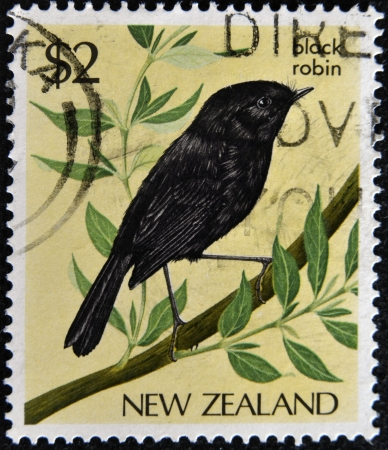 NEW ZEALAND - CIRCA 1986: A stamp printed in New Zealand, shows a black robin, circa 1986  Stock Photo - 17140231