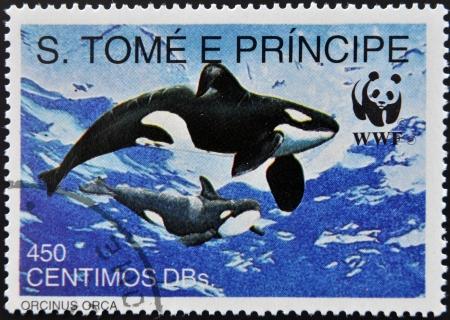 tome: SAO TOME - CIRCA 1980: A stamp printed in Sao Tome shows orcinus orca, circa 1980 Editorial