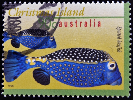 boxfish: AUSTRALIA - CIRCA 1996: A stamp printed in Australia shows an image of Spotted boxfish, christmas island, circa 1996
