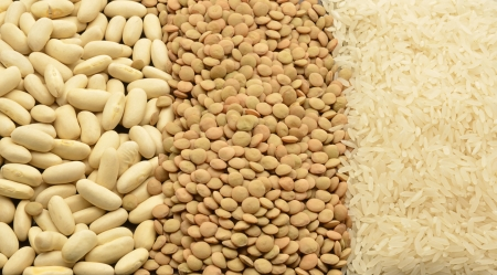 various legumes: lentils, rice and beans photo