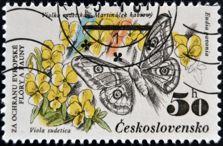 CZECHOSLOVAKIA - CIRCA 1983: A Stamp printed in Czechoslovakia shows image of a eudia pavonia and viola sudetica, circa 1983  photo