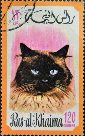 RAS AL-KHAIMAH - CIRCA 1971: A stamp printed in Ras al-Khaimah shows a cat, circa 1971 Stock Photo - 17745620
