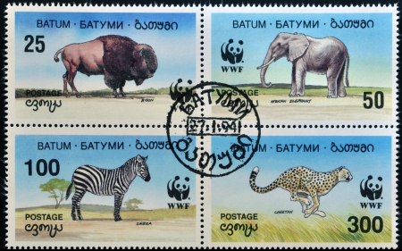 BATUMI - CIRCA 1994: A stamp printed in Batumi shows elephant, bison, zebra and cheetah, circa 1994