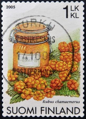chicouté: FINLANDE - CIRCA 2005: Un timbre imprimé en Finlande montre chicouté, Rubus chamaemorus, circa 2005 Banque d'images