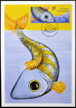 ichthyology: FINLAND - CIRCA 2008: A stamp printed in Finland shows a fish, circa 2008