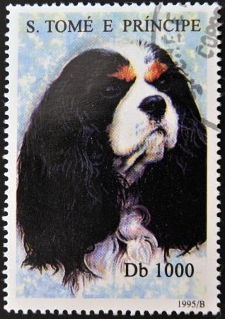 tomo: SAO TOME E PRINCIPE - CIRCA 1995: Un timbro stampato in Sao Tome mostra un cane, circa 1995