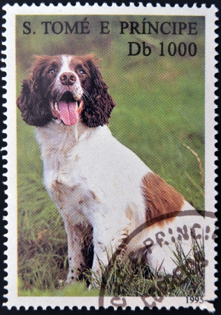 tome: SAO TOME AND PRINCIPE - CIRCA 1995: A stamp printed in Sao Tome shows a dog, circa 1995