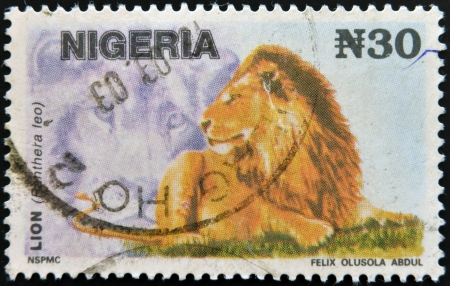 NIGERIA- CIRCA 1993: A stamp printed in Nigeria shows Lion, Panthera leo, circa 1993  photo
