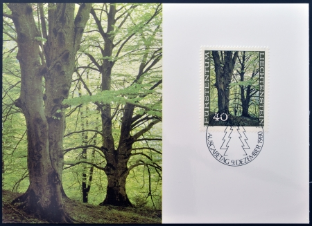 LIECHTENSTEIN - CIRCA 1980  A stamp printed in Liechtenstein dedicated to the forest in the four seasons shows Beeches on Matrula in Spring, circa 1980