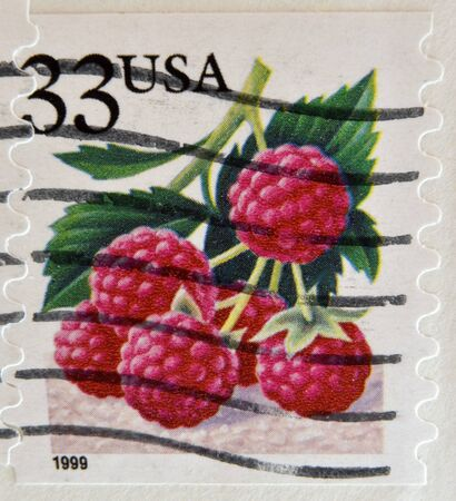 sender: UNITED STATES OF AMERICA - CIRCA 1999  A stamp printed in USA shows Raspberries, circa 1999