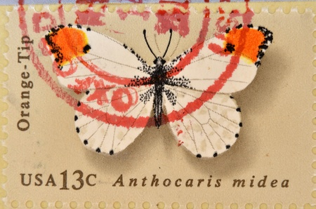 anthocharis: UNITED STATES OF AMERICA - CIRCA 1977: A Stamp printed in USA shows the Orange Tip, Butterfly, circa 1977