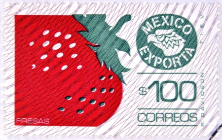 fragaria: MEXICO - CIRCA 1987: a stamp printed in the Mexico shows strawberry, Mexican Export, circa 1987