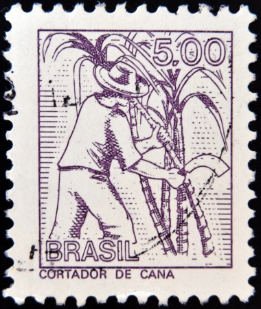 BRAZIL - CIRCA 1950: A stamp printed in Brazil shows cut cane, circa 1950 photo