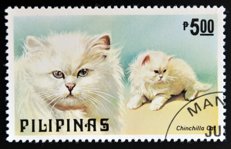 PHILIPPINES - CIRCA 1979: A stamp printed in Philippines shows Chinchilla cat, circa 1979