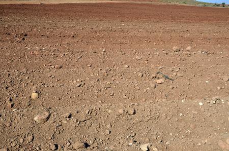 plowed field: Plowed field or ploughland Stock Photo