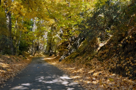 alpujarra: autumn road