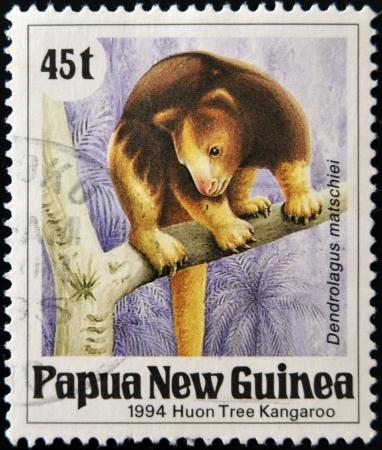 PAPUA NEW GUINEA - CIRCA 1994: A stamp printed in Papua shows a Huon Tree Kangaroo (dendrolagus matschiei), circa 1994