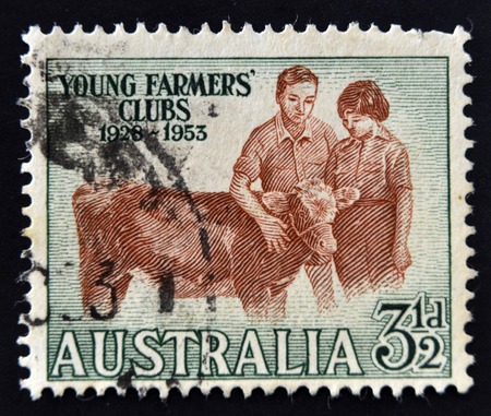 AUSTRALIA - CIRCA 1953: A Stamp printed in Australia shows the Boy and Girl with Calf, Young Farmers Clubs, 25th anniversary, circa 1953