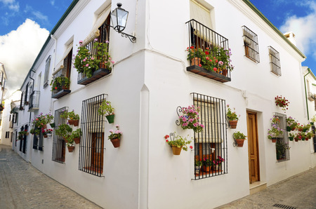 Street scene with pots of flower in the wall, Cordoba, Andalusia photo