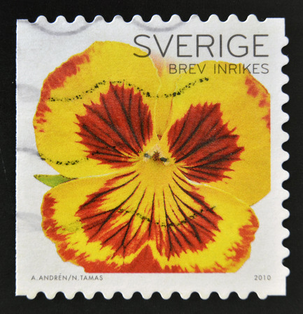 SWEDEN - CIRCA 2010: a stamp printed in Sweden shows close up view of beautiful pansy flower, circa 2010.  photo