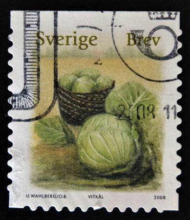 frondage: SWEDEN - CIRCA 2008: stamp printed in Sweden shows Cabbage, circa 2008