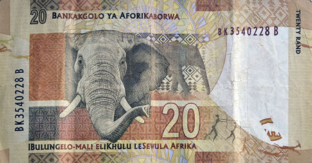 suid: SOUTH AFRICA - CIRCA 2014: Elephant on 20 Rand 2014 Banknote from South Africa. Editorial