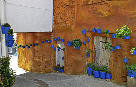 Street scene with pots of flower in the wall photo
