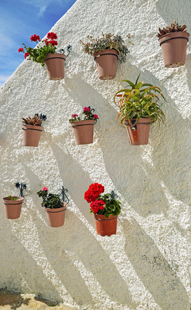 spanish homes: Flowers in pots on white wall