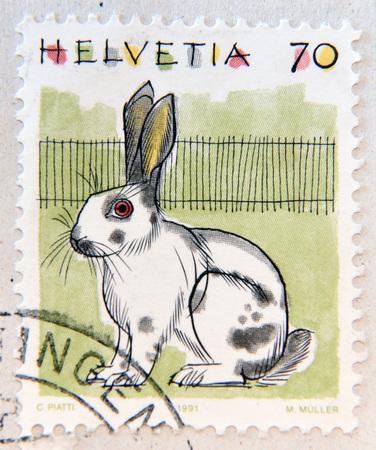 cowardice: SWITZERLAND - CIRCA 1991: A stamp printed in Switzerland, shows Rabbit, circa 1991
