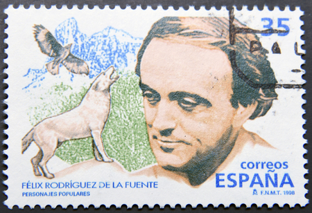felix: SPAIN - CIRCA 1998: A postage stamp of spain shows Felix Rodriguez de La Fuente, Spanish naturalist and broadcaster