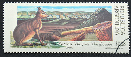 sarmiento: GRANADA, SPAIN - DECEMBER 1, 2015: A stamp printed in Argentina shows the natural monument petrified forests in Patagonia, 1992 Editorial