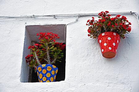 planters: Wall is a typical Andalusian patio Stock Photo