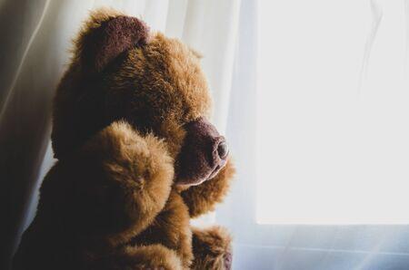 lonely teddy bear looking tru the window
